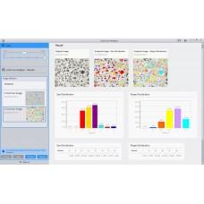 Модуль анализа Чугуна (Cast Iron Analysis) для Zeiss ZEN Core 2