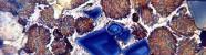 Поляризационный контраст Axio Lab A1 (8)